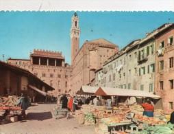1960  SIENA