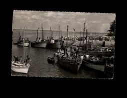 29 - LOCTUDY - Port - Phare - Loctudy