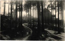 BRABANT  2 CP  Beersel   De Beuken  Goedendag   1912 - Ohne Zuordnung
