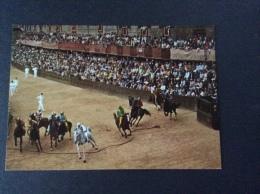 SIENA - Il Palio - La Mossa (partenza) - cartolina FG C NV