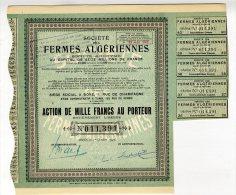 /!\ 4212 - Action - Algérie - 1000 Francs - 1947 - Société Des Fermes Algériennes - Africa