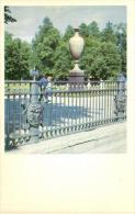 79921 - Russie      Leningrad    Jardin  En Ete - Russie
