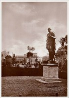 ROMA - Das Forum Giulio Cesare, Statue - Monuments