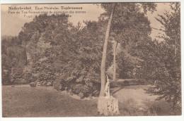 Nederbrakel, Eaux Minérales, Topbronnen, Parc Du Top Formant Zone De Protection Des Sources (pk13825) - Brakel