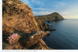 Postcard - Cliffs of Clare Island, Mayo. 2014