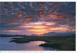Postcard - Ballydavid Head On The Dingle Peninsula, Kerry. 2014 - Kerry