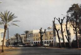 DJIBOUTI CARTE POSTALE  - Avenue Administrateur Bernard - T.B.E. - Djibouti