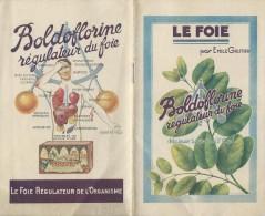 Boldoflorine/Régulateur Du Foie/ Tisane/ Le Foie/ Emile Gautier/ /vers 1935        LIV46 - Publicité