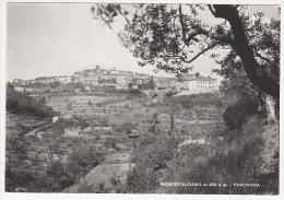 ^ MONTEPULCIANO SIENA PANORAMA  213