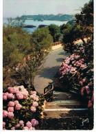 BIARRITZ - Promenade Sur Le Promontoire De L´ Atalaye à Travers Les Tamaris - Yvon - Biarritz