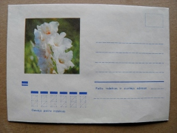 Cover From Lithuania, USSR Occupation Period, Flowers Flora 1972 780 - Lituanie