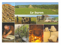 LE BURON Et Sa Couverture De Lauze.  Fabrication Du Fromage - Paysans