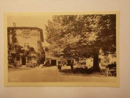 Carte Postale - PEROUGES (01) - La Place Et Le Tilleul (88/430) - Pérouges