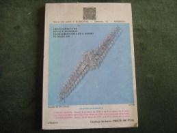 Catálogo Duran Sala De Arte Y Subastas Nº 119 Año 1979-Gran Subasta De Joyas Y Monedas Extraordinaria De S.Isidro - Other