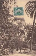 HYERES JARDIN BOTANIQUE RIQUIER N° 1 - Hyeres