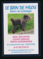 """Calendrier Petit Format 2010, Plastifié Rigide : """"Le Bain De Milou"""" (Poissy, Yvelines), Salon De Toilettage, Chien - Calendarios"""