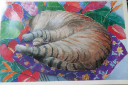 Carte Double Cat - Fiestas & Eventos