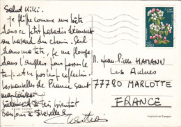 ALGERIE 1.40d FLEUR Sur CARTE POSTALE TIGZIRT - Algérie (1962-...)