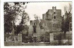 CPSM TEBESSA (Algérie) - Monument Aux Morts - Tebessa