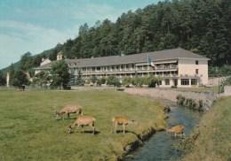 ABRESCHVILLER (Moselle) - Centre Médical Départemental Saint-Luc - Autres Communes