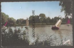77--CHELLES -GOURNAY  Régates Sur La Marne--cpsm Pf Colorisée - Chelles