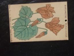 Barometre Miraculeux Fleur Cyclamen Recto Verso - Sonstige