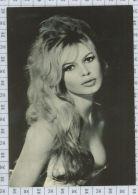 Brigitte Bardot - Artistes