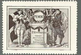 TIMBRE VIGNETTE DELANDRE - WW1 - 3E RGT INFANTERIE PIEMONT - Commemorative Labels