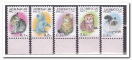 Azerbeidzjan 2014, Postfris MNH, Cats - Azerbeidzjan