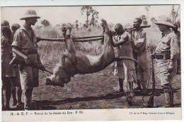 AFRIQUE EQUATORIALE FRANCAISE . RETOUR DE LA CHASSE AU LION . Fernand NATHAN . F.N. - Cartes Postales