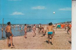 SPORT - VOLLEYBALL / Kust Belgie - Volleyball