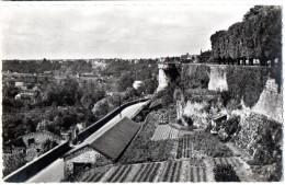CP, 86, POITIERS, Vallée Du Clain Et Tour à L'Oiseau, Vierge, Ed : Du Globe - Poitiers