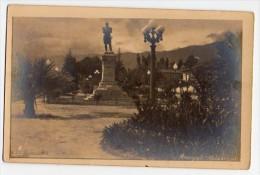 Tarjeta Postal De Bolivia Cochabamba Monument And Palm Tree Foto Real Photo Postcard Ca1920 W4-309 - Bolivia