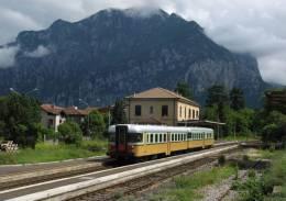 R75 FS Treni ALn 668.1401 Valmadrera (LC) Tpaívo Railroad Train Railways Zug Treno Steam Chemin De Fer - Trains