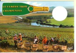 Le Fameux Trou Champenois - Champagne - Vignes - Vendanges - Vignes