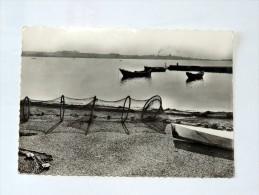 Carte Postale Ancienne : BALARUC LES BAINS : Vue Sur Le Port - Francia