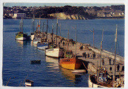 CROZON-MORGAT---1973--Bateaux De Pêche Dans Le Port,cpsm 15 X 10 N° 2915 éd Jos--pas Très Courante - Altri Comuni