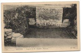 Hippone - Propri�t� de M. Chevillot - Mosa�que