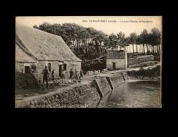 29 - LOCTUDY - Moulin à Eau - Ferme - Oie - Loctudy