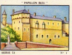 IMAGE FLAN PAPILLON BLEU Serie 73 CHATEAU DE CHAMBERY(LOT 09) - Otros