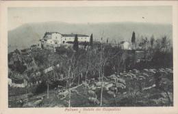 Paliano-veduta Dei Cappuccini- - Frosinone
