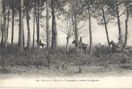 DEPT 64 - Environs De BIARRITZ - Promenade à Travers Les Pignadas - ENCH - - Biarritz