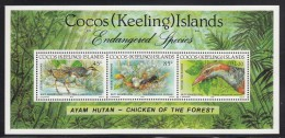 Cocos MNH Scott #263 Souvenir Sheet Of 3 Buff-banded Rail - Selvedge Has Album Adherence - Cocos (Keeling) Islands