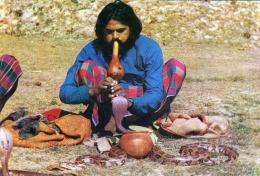 SNAKE CHARMER - Indien - Indien