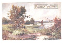 THE NORFOLK BROADS ON THE YARE BIRTHDAY WISHES USED 1908 RAPHAEL TUCK OILETTE POSTCARD ART ARTIST DRAWN POSTCARD - Angleterre