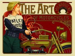 Cartel affiche poster Vintage Advertisings GRAN FORMAT (35X42 CM. APROX.) 1