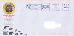 EMA ML 088157 Aude + Flamme Réserve Africaine Sigean Flamants Roses éléphant Lion Rhino Girafe Croco Autruche - Félins