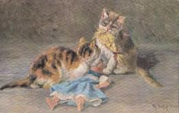 CPA  Illustrateur Signé  CHAT CHATS   POUPEE  Timbré 1905 - Katten