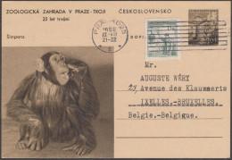 Tchécoslovaquie 1956. Entier Postal. 25ième  Anniversaire Du Jardin Zoologique De Prague-Troji. Chimpanzé - Chimpanzés