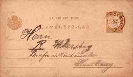 Alte Postkarte Ungarn - 2 Filler - Gelaufen 1892 Von ROZSAHEG - Ruzomberok - Varietà & Curiosità